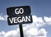 picture of vegan  - Go Vegan sign with clouds and sky background  - JPG
