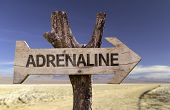 stock photo of raid  - Adrenaline wooden sign with a desert background  - JPG
