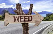 foto of weed  - Weed wooden sign with a street background - JPG