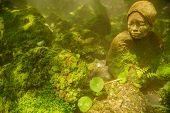 picture of garden sculpture  - japanese woman sculpture in cold mossy garden - JPG