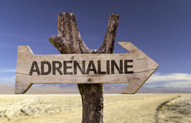 stock photo of opiate  - Adrenaline wooden sign with a desert background  - JPG