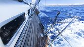 stock photo of yachts  - Sailing - JPG