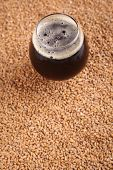 image of malt  - Snifter glass with black stout beer standing over malted barley grains - JPG
