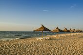 picture of azov  - The beach on the Sea of Azov in the early morning - JPG