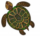 picture of aquatic animal  - Decorative graphic turtle - JPG