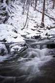 Постер, плакат: Smoky Mountain Winter Stream 3