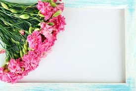 picture of carnations  - Beautiful bouquet of pink carnation with wooden frame isolated on white - JPG