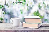 Pile Of Books, Glasses And Cup Outdoors Spring Or Summertime poster