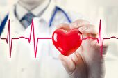 Cardiologist Holding Heart 3D Model. Concept With Cardiogram poster