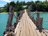 picture of langkawi  - Wooden pathway - JPG