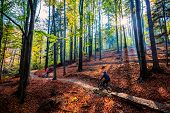 Cycling, mountain biker couple on cycle trail in autumn forest. Mountain biking in autumn landscape  poster
