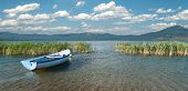 wide view of a row boat and cloudscape on lake Prespa from the macedonian side poster