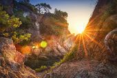 Mediterranean Nature At Sunrise With Bright Golden Sunbeams. Amazing Landscape Of Trees, Rocks, Sea poster