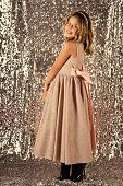 Fashion Model On Silver Background, Beauty. Fashion And Beauty, Little Princess. Child Girl In Styli poster