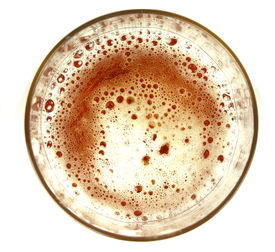 picture of transpiration  - Top view on glass of beer on white background - JPG
