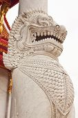 image of annal  - The lion image in front of Buddhist church at wat benchamaborphit in Thailand - JPG