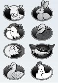 picture of turkey-cock  - Farm animals collection icons - JPG