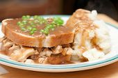 image of diners  - diner style hot chicken sandwich with mashed potatoes - JPG