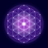 image of blue  - Bright Flower of Life with stars on dark blue background - JPG