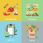 stock photo of modification  - Gmo design concept set with food genetic modification flat icons isolated vector illustration - JPG