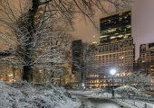 picture of storms  - Central Park New York City at night after snow storm - JPG