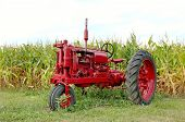 foto of workhorses  - antique red tractor in front of a corn field - JPG