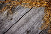 image of dry grass  - Autumn frame of dried grass on old wooden planks - JPG