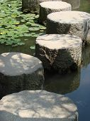pic of water lily  - Pathway through pond with water lilies Kyoto Japan - JPG
