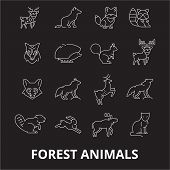 Forest Animals Editable Line Icons Vector Set On Black Background. Forest Animals White Outline Illu poster