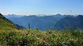 Ausblick Auf Das Fantastische Alpen Panorama. Im Vordergrund Ist Eine Saftig Grüne Alpen Wiese Mit G poster