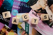 Top View Of Pile Of Different Tabloid Magazines And Wooden Cubes With Word Facts On Surface poster