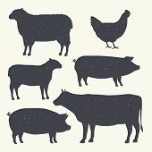 Farm Animals Vintage Set. Silhouettes Of Cow, Pig, Sheep, Lamb, Hen. Farm Animals Icons Isolated On  poster