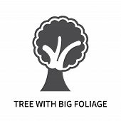 Tree With Big Foliage Icon Isolated On White Background. Tree With Big Foliage Icon Simple Sign. Tre poster