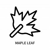 Maple Leaf Icon Isolated On White Background. Maple Leaf Icon Simple Sign. Maple Leaf Icon Trendy An poster
