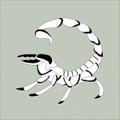 Scorpio , Vector Illustration ,lining Draw, Profile View poster