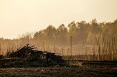 Spring Landscape With Plowed Field And Branch Stack. Plowed Cereal Field With Mist In Spring. Classi poster