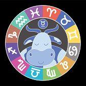 Zodiac Signs. Aquarius, Libra, Leo, Cancer, Pisces, Virgo, Capricorn, Sagittarius, Aries, Gemini, Sc poster