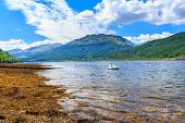 stock photo of bute  - Stunning scenery at Loch Long Argyll and Bute Scotland - JPG
