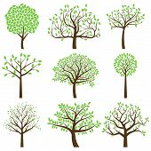 stock photo of curvy  - Vector Collection of Stylized Tree Silhouettes with Leaves - JPG