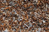 pic of ferrous metal  - Pieces of ferrous metal from magnetic separation of shredded cars - JPG