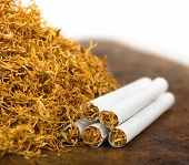 stock photo of tobacco leaf  - pile of tobacco and hand rolled cigarettes