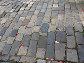 picture of mew  - Original old, worn cobblestoned road in Hove mews.