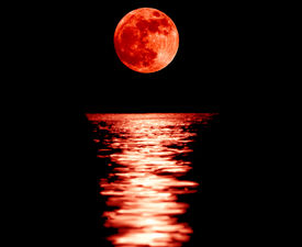 picture of moon silhouette  - Full red moon with reflection closeup showing the details of the lunar surface.As seen from VarnaBulgaria ** Note: Visible grain at 100%, best at smaller sizes - JPG
