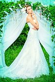 stock photo of wedding arch  - Beautiful elegant bride stands under the wedding arch - JPG