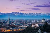 picture of mole  - Turin  - JPG