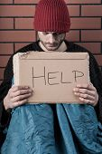 picture of begging  - Homeless young man begging on the street with help sign - JPG