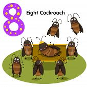 stock photo of cockroach  - Illustrator of number eight cockroach on background - JPG
