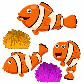 pic of clown fish  - Illustrator of clown fish funny  set and anemone - JPG
