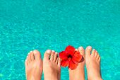 stock photo of wet feet  - macro picture the newlyweds feet by the pool with flower - JPG