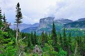 picture of conifers  - mountains in clouds and high alpine conifer forest in glacier national park in summer - JPG